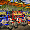 The Park Bikes by John McCuen
