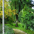 The Park Federico Garcia Lorca Is Situated In The City Of Granada, In Spain. by Guido Montanes Castillo