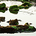 The Passetto Rocks And Water, Ancona, Italy by Luigi Morbidelli