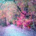 The Pathway Of Gentle Memories by Tara Turner