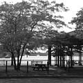 The Pavilion by Nancy Ferrier