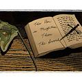 The Pen Is Mightier by Robert Boyette