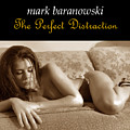 The Perfect Distraction by Mark Baranowski