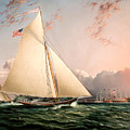 The Philip R. Paulding In New York Harbor by James Edward Buttersworth