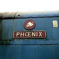 The Phoenix by Julia Raddatz