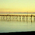 The Pier by Maro Kentros
