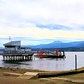 The Pilot Boat House And Pilot Boats Port Angeles Harbor by Delores Malcomson
