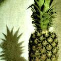 The Pineapple by Toula Mavridou-Messer