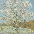 The Pink Peach Tree Arles, April - May 1888 Vincent Van Gogh 1853  1890 by Artistic Panda