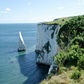 The Pinnacle Stack Of White Chalk From The Cliffs Of The Isle Of Purbeck Dorset England Uk by Andy Smy