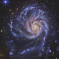 The Pinwheel Galaxy, Also Known As Ngc by R Jay GaBany