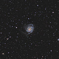 The Pinwheel Galaxy by Brent Newton