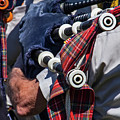 The Pipes Are Calling by Bob Slitzan