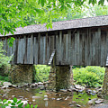 The Pisgah Covered Bridge by Suzanne Gaff