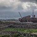 The Plassey Shipwreck by Teresa Wilson