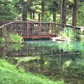 The Pond Bridge by Frank Wilson