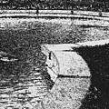 The Pond by Jeffery L Bowers