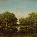 The Pool, Memory Of The Forest Of Chambord by Theodore Rousseau