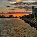 The Port by Rafael Gonzalez