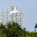 The Portland Oregon Sign Aka The White Stag Sign In Portland Oregon 5d3429 by Wingsdomain Art and Photography