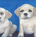 The Pups 2 by Roger Wedegis
