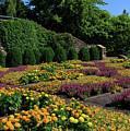 The Quilt Garden In Asheville by Jill Lang