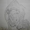 The Raging Rhino by Nicole Lee