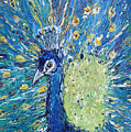 The Rain Peacock's Pride by Nandita  Richie