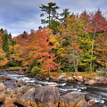 The Rapids On The Moose River by David Patterson