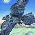 The Raven  by Antony Galbraith