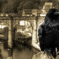 The Raven Of Knareborough Castle by Rob Hawkins