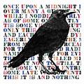 The Raven Poem Art Print by Sandra McGinley
