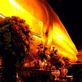 The Reclining Buddha by Diane Height