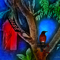 The Red Birdhouse by Arline Wagner