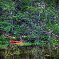 The Red Canoe by David Patterson