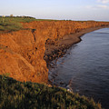 The Red Cliffs Of Prince Edward Island by Taylor S. Kennedy