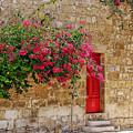 The Red Door by Anselmo Albert Torres