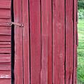 The Red Door by Tina B Hamilton