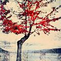 The Red Tree At Okanagan Lake by Tara Turner