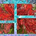 The Rhody 05 by Tim Allen