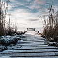 The Rickety Jetty by Marcus Karlsson Sall