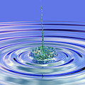 The Ripple Effect by Betsy Knapp