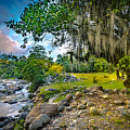 The River At Cocora by Francisco Gomez