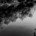The River In Black And White by Dawn Mullis