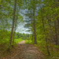 The Road Goes Ever On And On by Bill McEntee