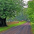 The Road Less Traveled by Kay Lovingood