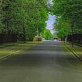 The Road On A Border Of Royal Park by Aleksei Musikhin