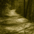 The Road To . . .  by Ches Black