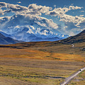 The Road To Denali by Rick Berk