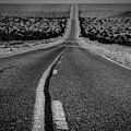 The Road To Shoshone by Jeffrey Hubbard